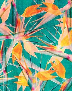 Trendy flowers tropical illustration bird of paradise 45 ideas Motif Tropical, Tropical Pattern, Tropical Prints, Tropical Fabric, Deco Design, Bird Design, Wall Design, Bird Wallpaper, Pattern Wallpaper