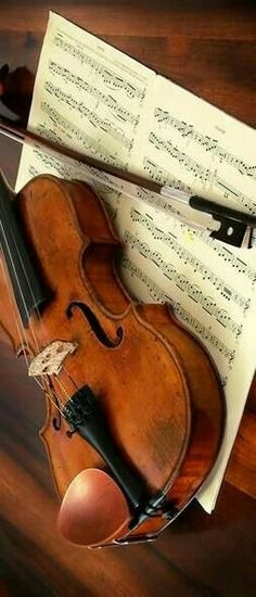 violin / love of music / musical images Sound Of Music, Music Is Life, My Music, Piano, Mundo Musical, Violin Music, Guitar For Beginners, Classical Music, Music Stuff