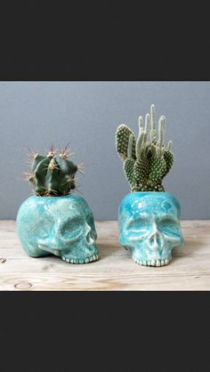 A cactus is a superb means to bring in a all-natural element to your house and workplace. The flowers of several succulents and cactus are clearly, their crowning glory. Cactus can be cute decor ideas for your room. Skull Planter, Josie Loves, Room Deco, Plants Are Friends, Skull Decor, Deco Floral, Cactus Y Suculentas, Cacti And Succulents, House Plants