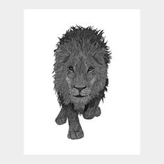 Lion now featured on Fab.