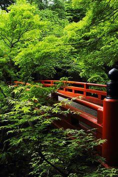 Kyoto, Japan: photo by 92san
