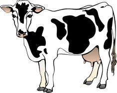 Bos taurus (Cow) 1 - Mammals - Vector Illustration/Drawing/Symbol (SVG) - IAN Image Library - Free High Resolution and Vector Environmental Science Images Cartoon Cow, Cartoon Pics, Animated Cow, Bull Images, Cow Vector, Vector Icons, Inkscape Tutorials, Cow Pictures, Free Clipart Images