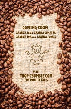 Coming Soon! South East Asia's finest Arabica coffee beans. Roasted or green, these beans are exclusively produced by our experienced coffee farmers. Nowhere else is better to harvest Arabica beans than in the high altitude nutrient rich volcanic soils. Stay tuned! . . #tropicbumble #bulkpurchasestore #restaurants #foodsupplier #gourmetfood #gourmetcoffee #arabicacoffee #coffeebeans #sumatrancoffee #healthyfood #aroma #onlineshopping #onlinestore Food Suppliers, Arabica Coffee Beans, Stay Tuned, Farmers, Gourmet Recipes, Harvest, Restaurants, Tropical, Green