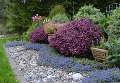 Dreaming of the Sea - I love it when a landscape project comes together! - via the Dandelion Wrangler.