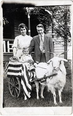 Jack's Father and Grandparents with Goat Cart by Photo_History, via Flickr