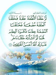 مراحل تكون الجنين كما اثبتها العلم و المذكورة في القرآن الكريم Quran Verses, Islamic, Decorative Plates