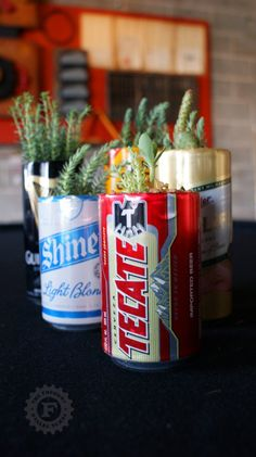 herbs and succulents in beer cans...what a great reusable idea.