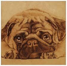 Resultado de imagen para imagenes de animales dibujados tiernos