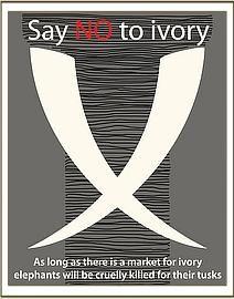 Just say NO WAY! Ivory trade