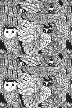 black and white owls (artist unknown)