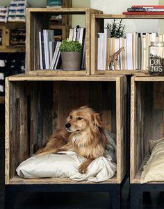 dustjacketattic:  pet waiting room