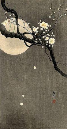 contrast, moon