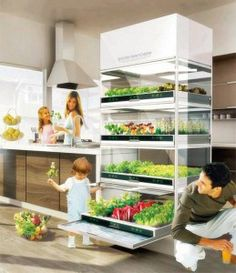 The Nano Garden resembles a refrigerator and makes home gardening for the land deprived set easy by using the latest in hydroponic technology.  Hyundai's Kitchen Nano Garden lets you grow fresh organic herbs, vegetables, and flowers right in your kitchen, and taking up no more space than a full-sized  refrigerator.