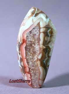 Utah Yellow Cat Mine Jurassic Petrified Redwood Limb Cast with Agate & Amethyst Crystal