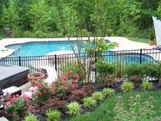 Low Maintenance Landscaping around Pool can find Pool landscaping and more on our website.Low Maintenance Landscaping around Pool 2 Fence Around Pool, Landscaping Around Patio, Swimming Pool Landscaping, Fence Landscaping, Pool Fence, Plants Around Pool, Pool Plants, Landscaping Supplies, Swimming Pools