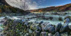 Omszałe, Kamienie, Murek, Dolina, Wzgórza, Drzewa, Zima, Anglia, Kumbria,  Obszar Lake District