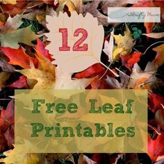 A Thrifty Mum: 12 Free leaf printables perfect for fall/autumn crafting