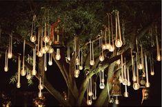 Lights in outdoor trees