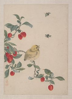 Birds, Insects and Flowers Yi Zhai
