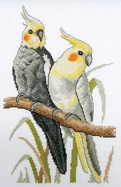 Cockatiels Cross Stitch Mini Kit by Country Threads