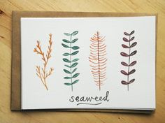 Flat Note Card Set - Seaweed