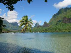 * Moorea *  Arquipélago da Sociedade. Polinésia Francesa. Área: 134 Km². População: 16.191 habitantes.