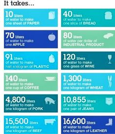 Profound researched diy water purification system look here Earth Day Tips, Earth Month, Water Footprint, Water Facts, World Water Day, Water Pollution, Water Management, Aqua, Water Purification