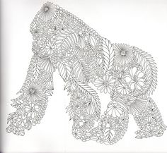 silverback gorilla coloring pages - photo#46