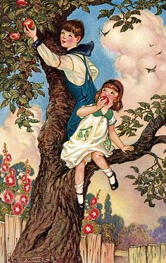 In the apple tree