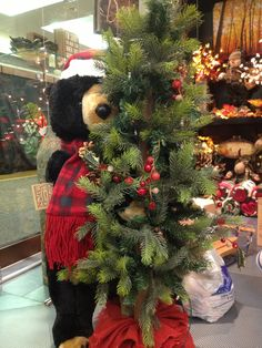 Big black bear with pre-lit tree that is battery operated