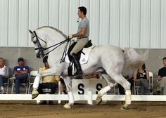 Robert Dover riding the PRE stallion Idilio II, owned by Hampton Green Farms.