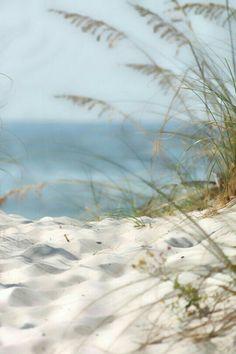 Dreaming of this coastal view, bright sunshine and warm sand. Playa Beach, Ocean Beach, Beach Resorts, Beach Grass, Sand Beach, Sea And Ocean, I Love The Beach, Beach Fun, Beach Scenes