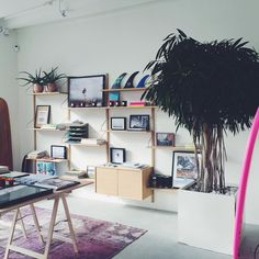 Have a thing for surfshops!  #havensurf antwerp #lppcityguidetoantwerp #store #surf #antwerp #havensurf