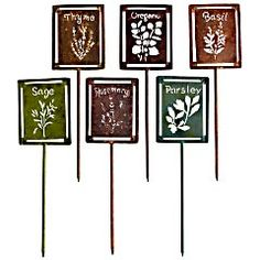 Pier 1 Herb Stakes - Set of 6