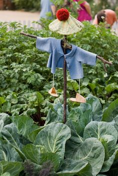 Cutest idea for a scarecrow!