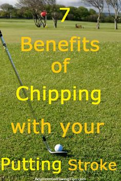Golf Tips For Beginners Learn the 7 benefits of chipping using your putting stroke. Get the ball closer to the hole with your chip shots by using a standard putting stroke. Golf Betting, Golf Chipping Tips, Golf Instructors, Golf Score, Golf Putting Tips, Best Golf Clubs, Golf Practice, Golf Tips For Beginners, Putt Putt