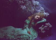 PHOTOGRAPHY - Katerina Plotnikova