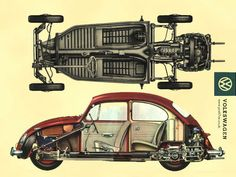 cut away. #beetle  #vw  #vwbeetle