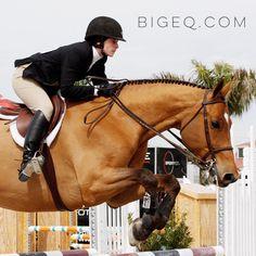 www.bigeq.com