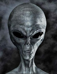 Bizarre and unidentified knocking sounds are heard in space, reports Chinese astronauts. Stories revolving around alien life and UFO incidents are nothing but mere mystery. Ancient Aliens, Aliens And Ufos, Aliens History, Alien Gris, Arte Alien, Alien Concept, Alien Races, Space Aliens, Alien Creatures