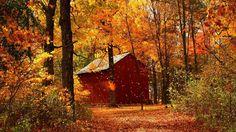 autumn - Pesquisa Google