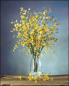 spring flower arrangement for buffet love clear vase w clear glass beads would use silk forsythia - Forsythia Arrangements