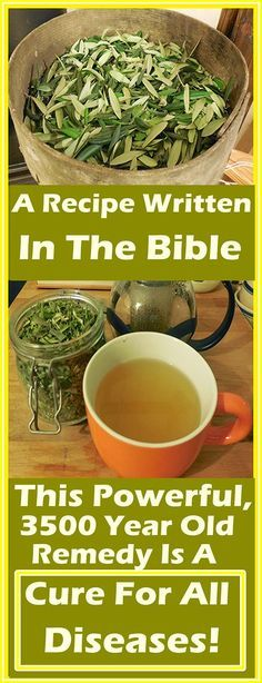 Holistic Health Remedies A Recipe Written In The Bible: This Powerful, 3500 Year Old Remedy Is A Cure For All Diseases! Holistic Remedies, Natural Home Remedies, Herbal Remedies, Health Remedies, Cough Remedies, Holistic Healing, Natural Medicine, Herbal Medicine, Joint Medicine