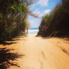 Trailblazing to the ocean  #Kauai, #Hawaii, #Flowkane