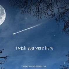 I wish....I could see you one more time Trevor (on this earth)