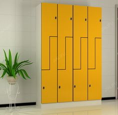 Qualified Public Lockers for Shopping Mall