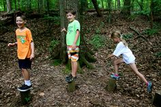 Team building on the low ropes course | Congressional Camp
