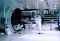 Freeze Drying / Lyophilization Equipment Market