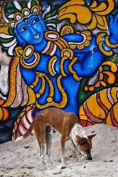 Beach art and dog, Kerala, India Stencil Graffiti, Graffiti Murals, Street Art Graffiti, Mural Painting, Mural Art, India Landscape, Street Dogs, Indian Folk Art, Kerala India