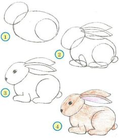 Drawing Ideas for Beginners Step by Step - Animals / How to Draw. Painting and Drawing for Kids / Luntiks. Children's Arts and Crafts Activities. Drawing and Poems Easy Drawings For Beginners, Easy Drawings For Kids, Cool Art Drawings, Pencil Art Drawings, Doodle Drawings, Art Drawings Sketches, Animal Drawings, Drawing Ideas, Drawing Animals